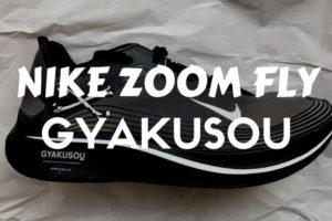 ズームフライ GYAKUSOU zoom fly