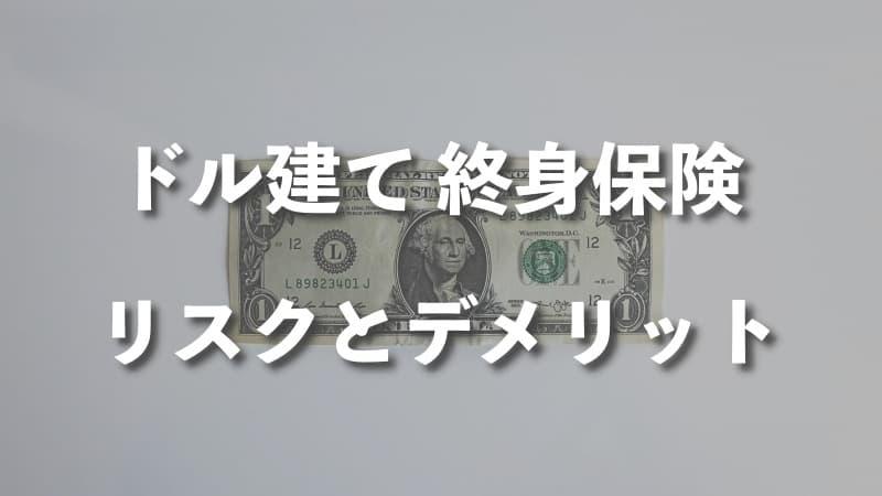 ドル建て終身保険のリスクとデメリット