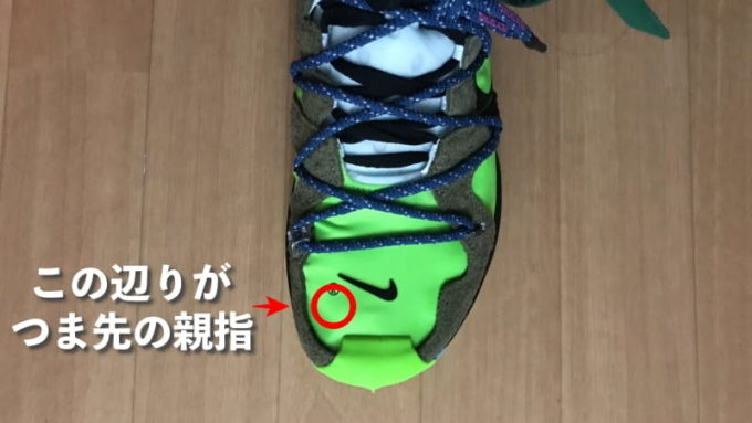 Off White Nike Zoom Terra Kiger 5 (オフホワイト ナイキ ズーム テラカイガー5)のサイズ感